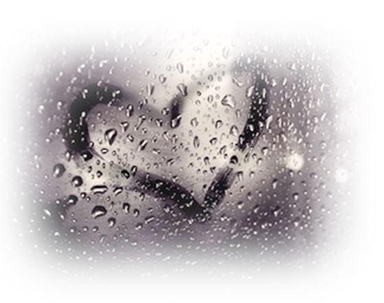 Rispetta l'ambiente…fai l'amore
